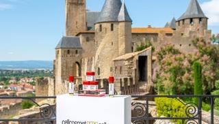 SPA HOTEL DE LA CITE - Carcassonne