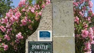 DOMAINE DE FOUCAUD - MEUBLÉ DE TOURISME - Carcassonne