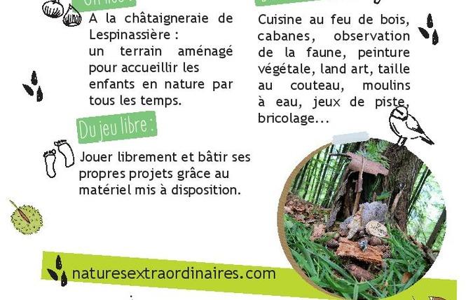 NATURES EXTRA-ORDINAIRES 2 - Lespinassière