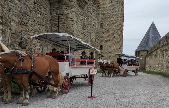 LES CALECHES DE LA CITE 1 - Carcassonne
