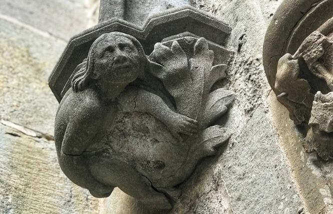 Visite guidée - La Cité, dés en main ! - agence paysdoc.com 1 - Carcassonne