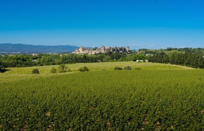 CITÉ MÉDIÉVALE 1 - Carcassonne