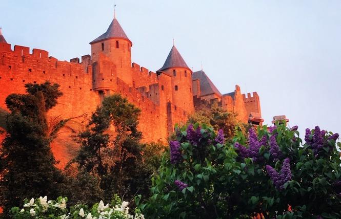 L'ARQUIERO 1 - Carcassonne