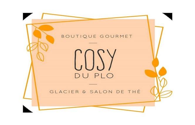LE COSY DU PLO 1 - Carcassonne