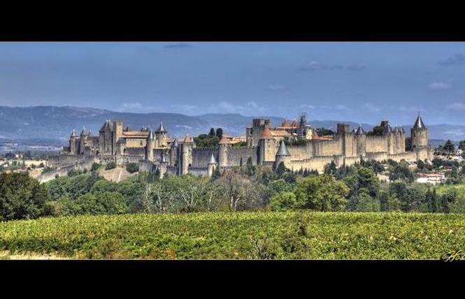 STUDIO AU PIED DU TALUS DE LA CITÉ 13 - Carcassonne